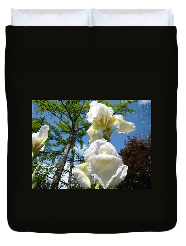 Iris Duvet Cover featuring the photograph Botanical Landscape Trees Blue Sky White Irises Iris Flowers by Baslee Troutman