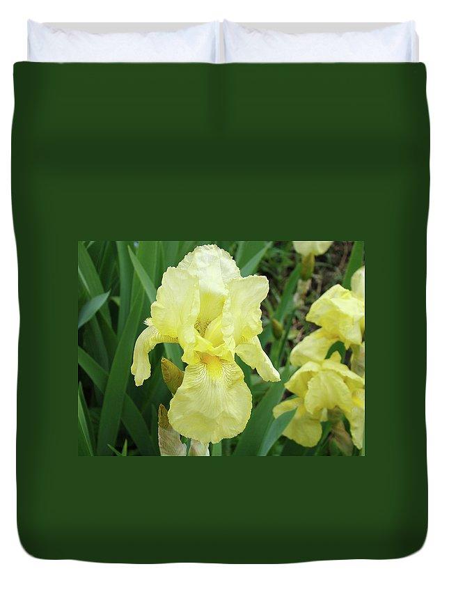 Iris Duvet Cover featuring the photograph Botanical Yellow Iris Flower Summer Floral Art Baslee Troutman by Baslee Troutman