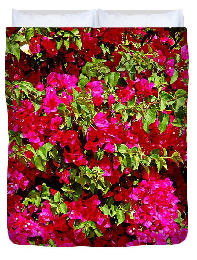 Bougainvillea Duvet Cover featuring the photograph Bougainvillea And Foliage by Robert Meyers-Lussier