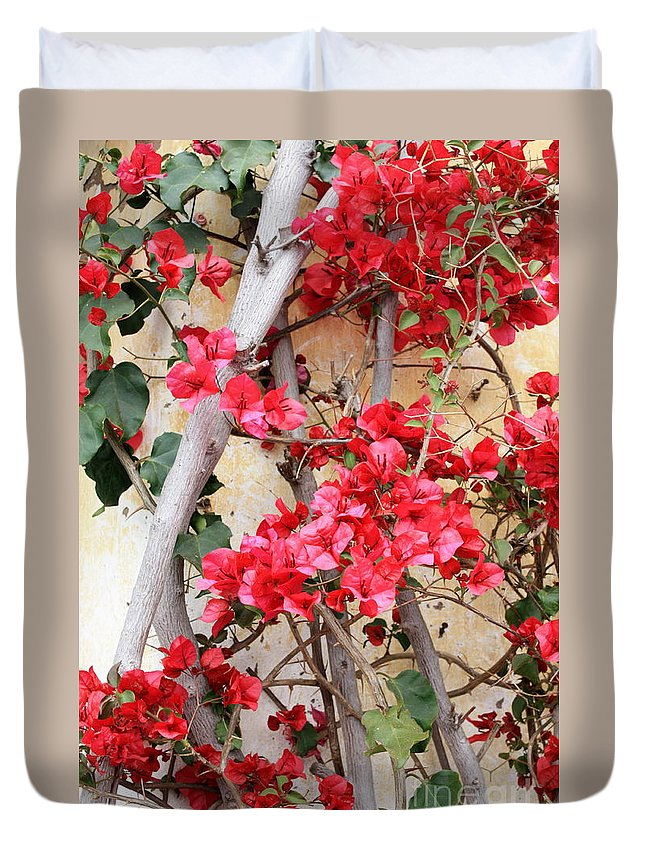 Bougainvilla Duvet Cover featuring the photograph Bougainvillea by Carol Groenen