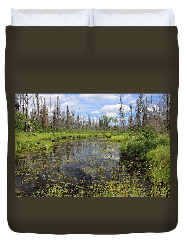 Boundary Waters Minnesota Lake Pond Swamp Nature Forest Park Lake Superior National Forest Duvet Cover featuring the photograph Boundary Waters Beauty by Shari Jardina