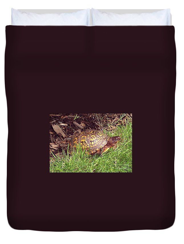 Box Turtle Duvet Cover featuring the photograph Box Turtle by CAC Graphics