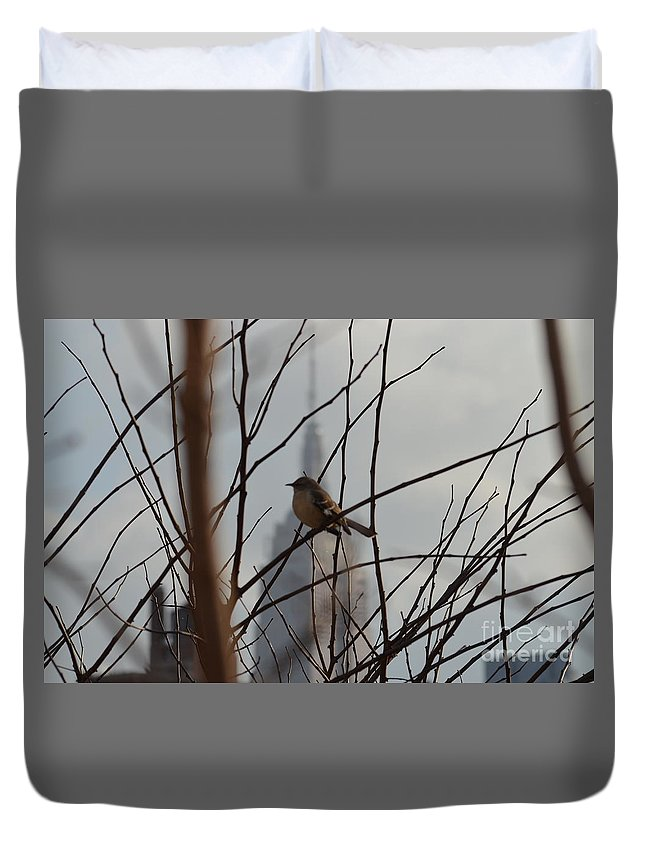 Bird Duvet Cover featuring the photograph Branch With A View by Des Brownlie