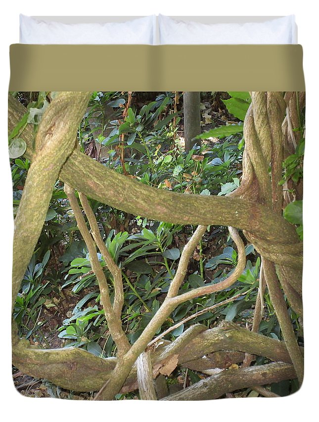 Branches Duvet Cover featuring the photograph Branches by Emily Boltinghouse