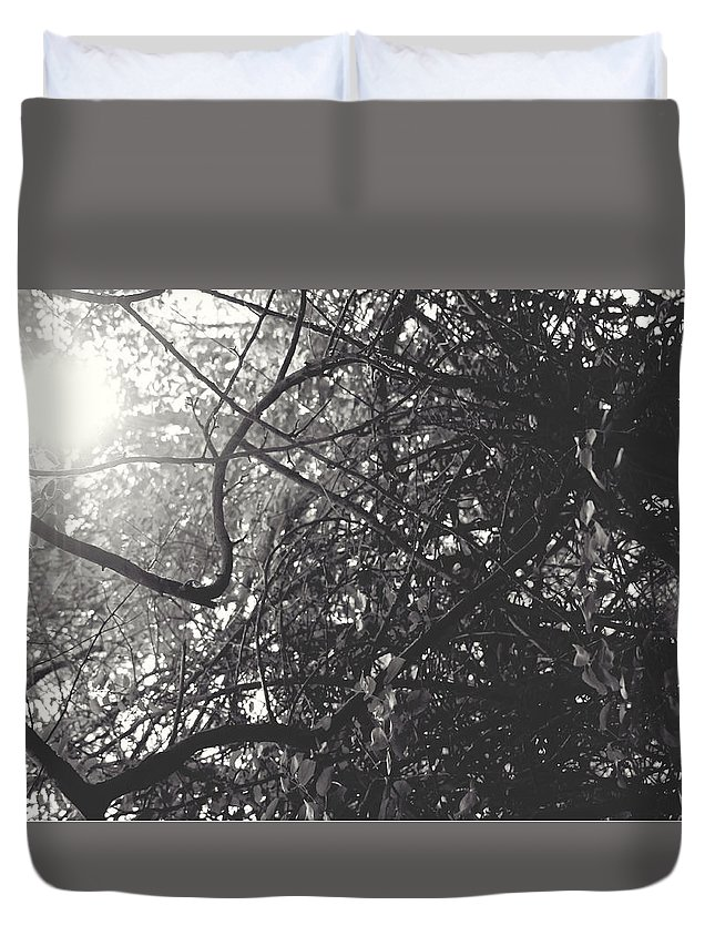 Lapeer Duvet Cover featuring the photograph Branches by Sarah Boyd
