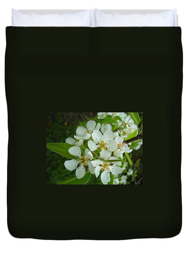 Nature Duvet Cover featuring the photograph Brandy In Bud On The Pear Tree by Peggy King