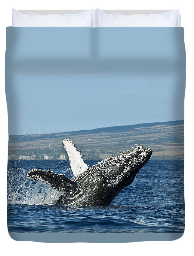 Above Duvet Cover featuring the photograph Breach Near Maui I by Dave Fleetham - Printscapes