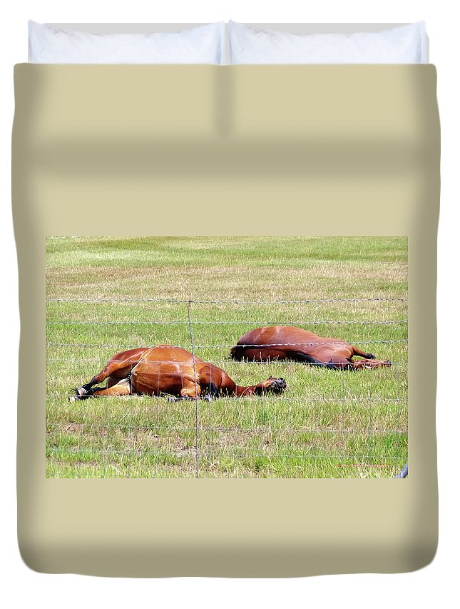 Horses Duvet Cover featuring the photograph Break Time by Don Siebel