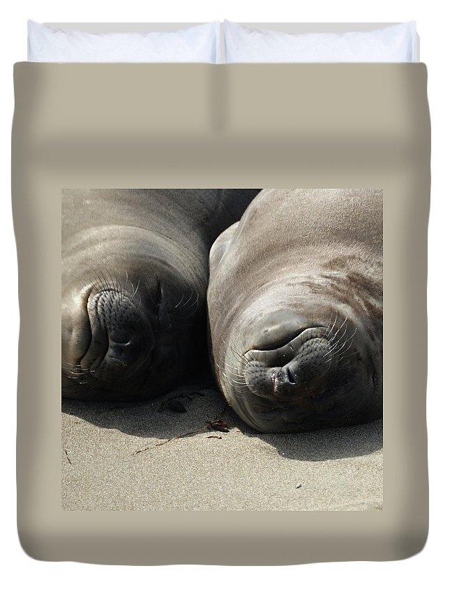Elephant Seals Duvet Cover featuring the photograph Break Time by Ernie Echols