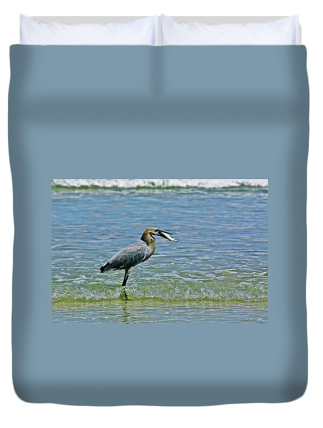 Birds Duvet Cover featuring the photograph Breakfast by Diana Hatcher