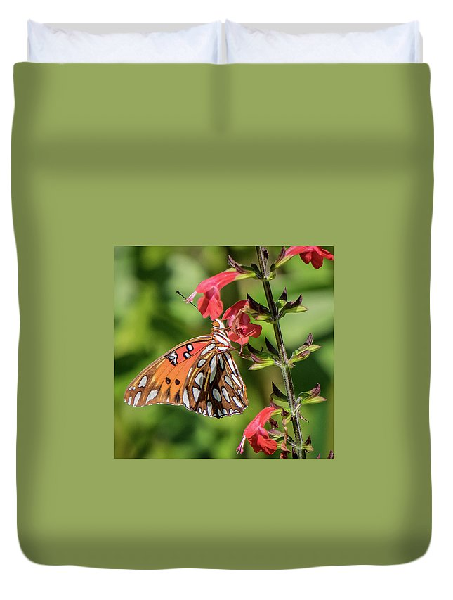 Florida Duvet Cover featuring the photograph Breakfast Feast by Jane Luxton