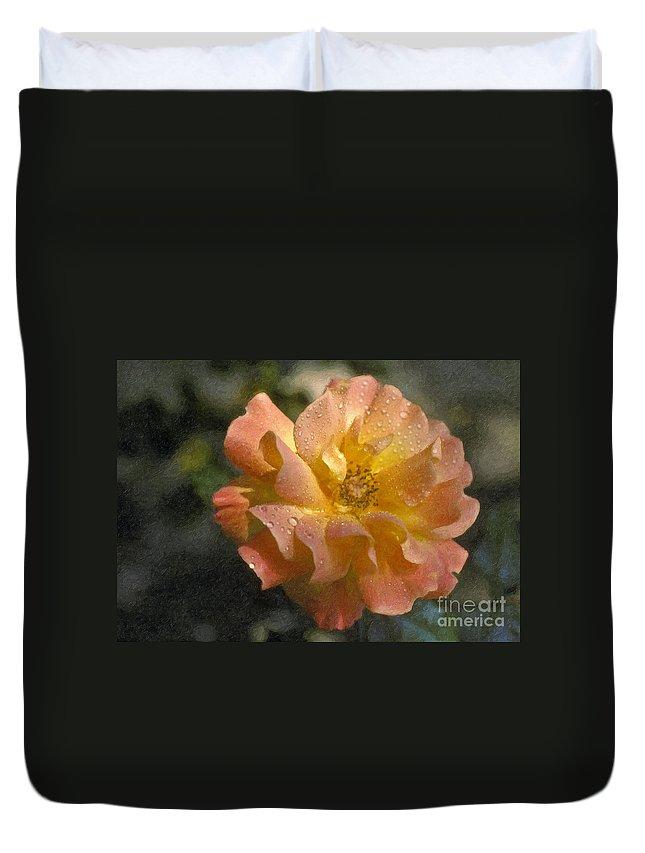 Bridal Pink Yellow Duvet Cover featuring the photograph Bridal Pink Yellow Hybrid Tea Rose Genus Rosa by David Zanzinger