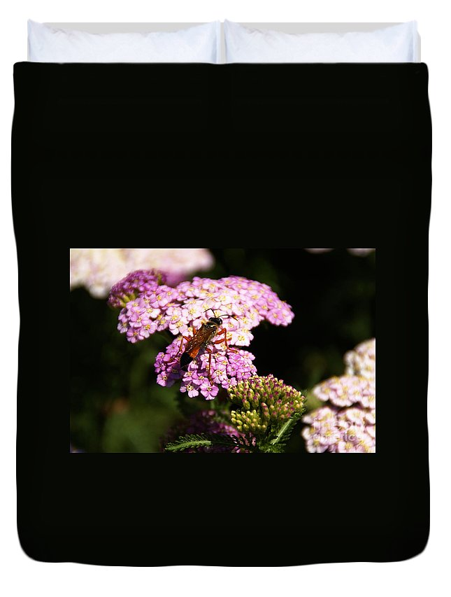 Garden Duvet Cover featuring the photograph Bridge Of Promise by Linda Shafer