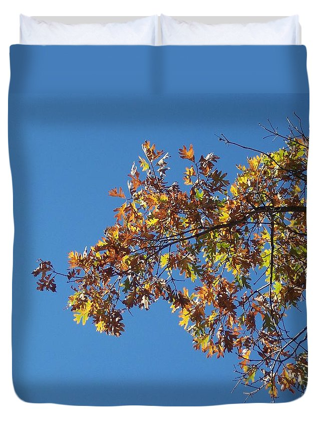 Branch Duvet Cover featuring the photograph Bright Autumn Branch by Michelle Miron-Rebbe