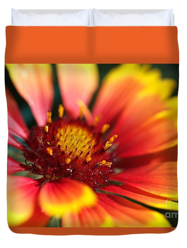 Flower Duvet Cover featuring the photograph Bright Blanket Flower by Joy Watson