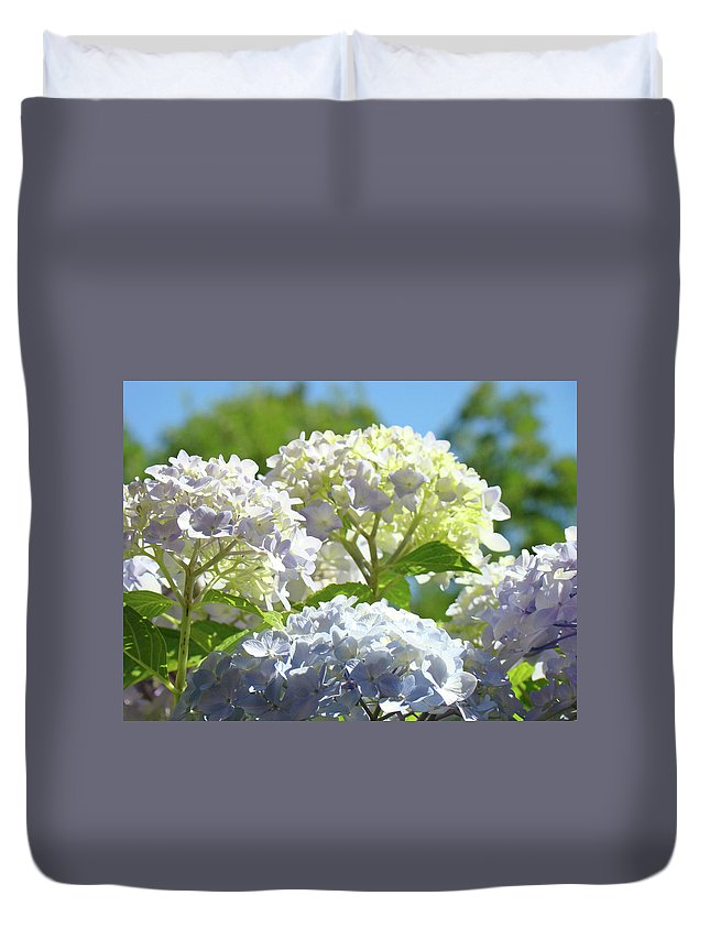 Nature Duvet Cover featuring the photograph Bright Floral Art Pastel Blue Purple Hydrangeas Flowers Baslee Troutman by Baslee Troutman