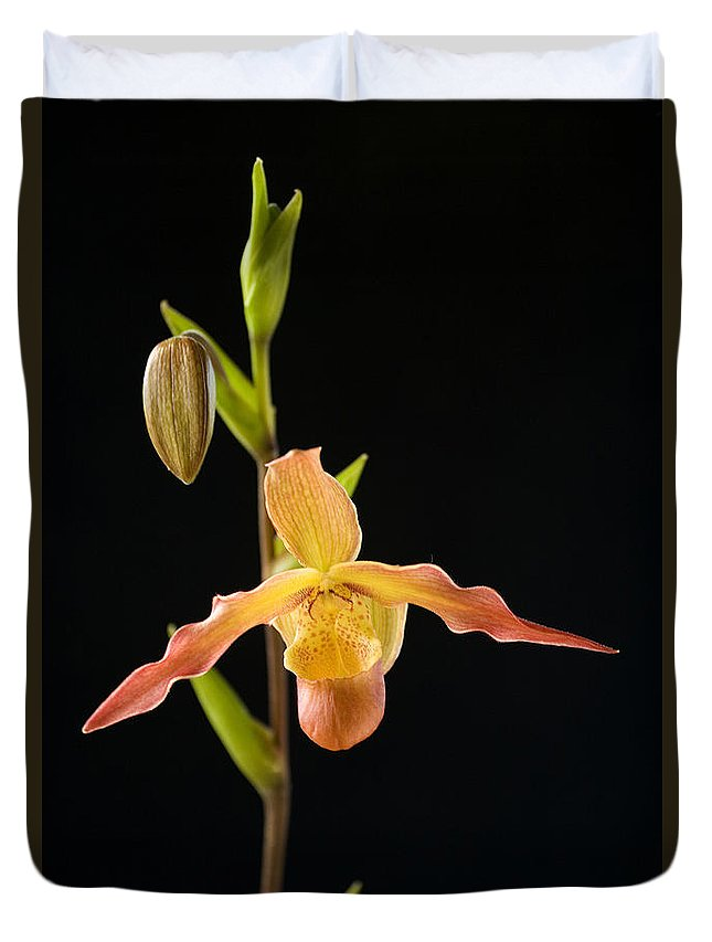 Black Duvet Cover featuring the photograph Bright Orchid by Ron Dahlquist - Printscapes