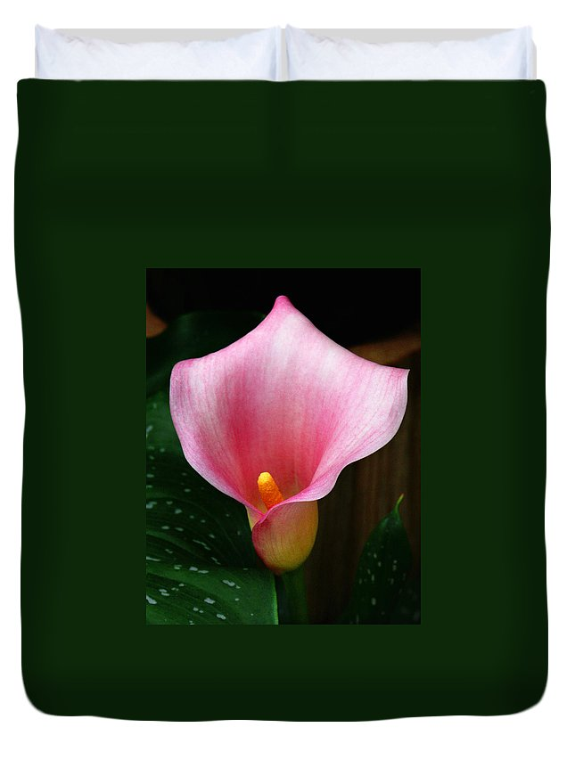Bright Pink Duvet Cover featuring the photograph Bright Pink Calla by Marilyn Hunt