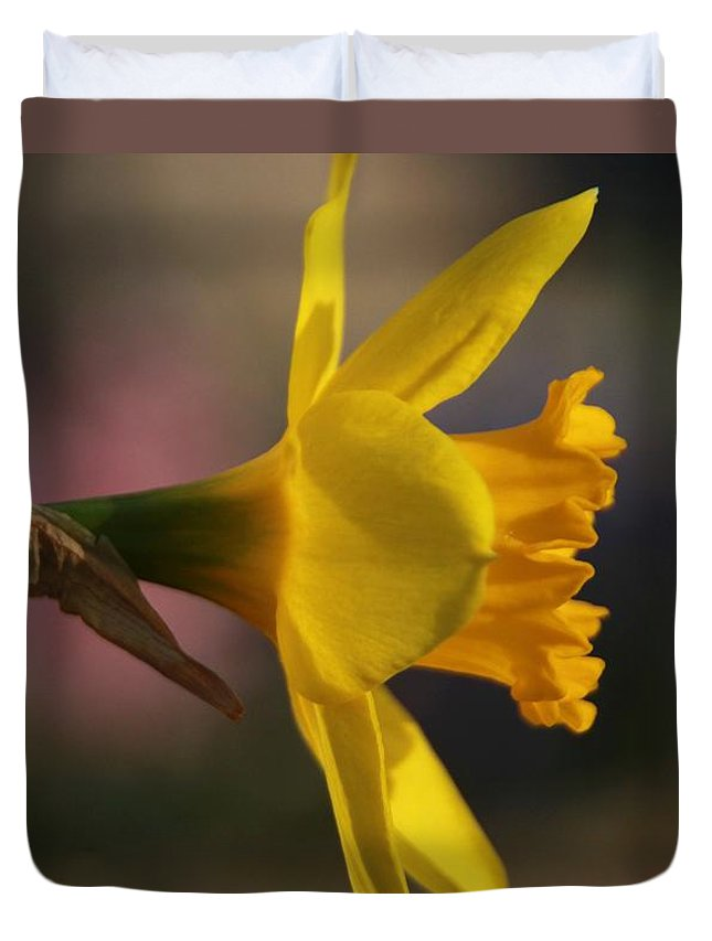 Narcissus Duvet Cover featuring the photograph Bright Yellow Daffodil by Chris Berry