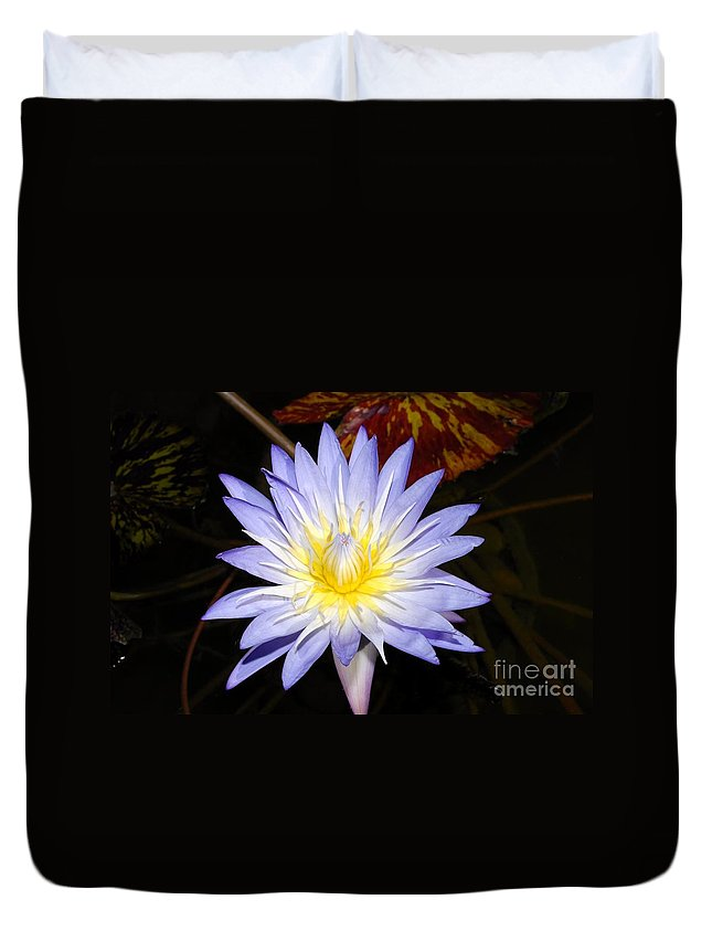 Lily Duvet Cover featuring the photograph Brilliant Beauty by David Lee Thompson