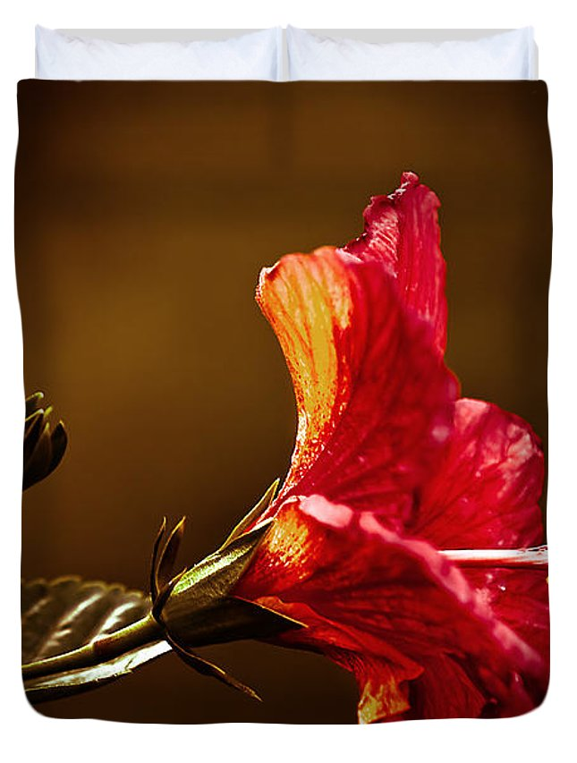 Hibiscus Duvet Cover featuring the photograph Brilliant Hibiscus by Keith Allen