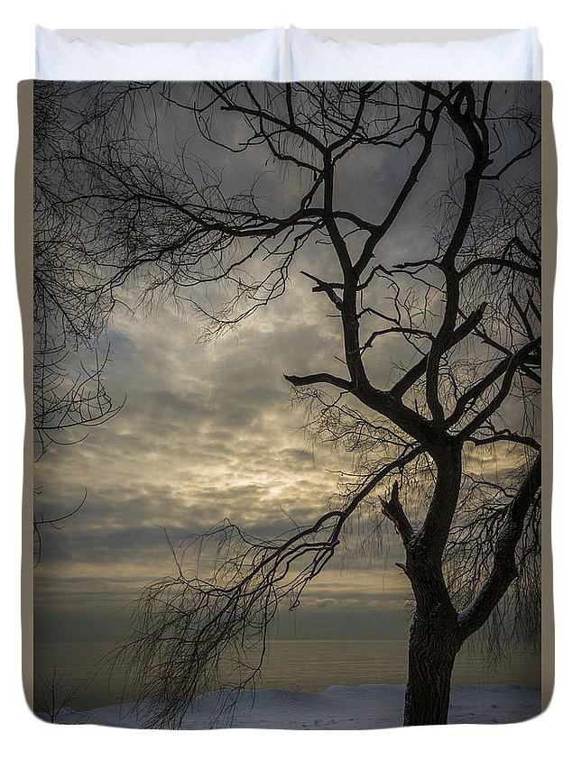 Canada Duvet Cover featuring the photograph Broken Tree by David Hook