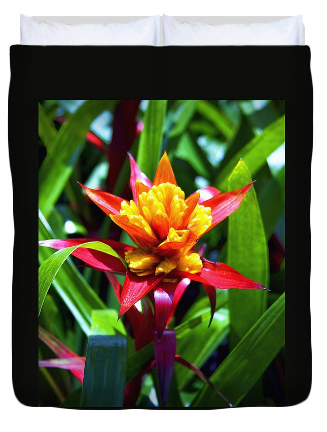 Bromelaid Duvet Cover featuring the photograph Bromeliad by William Dey