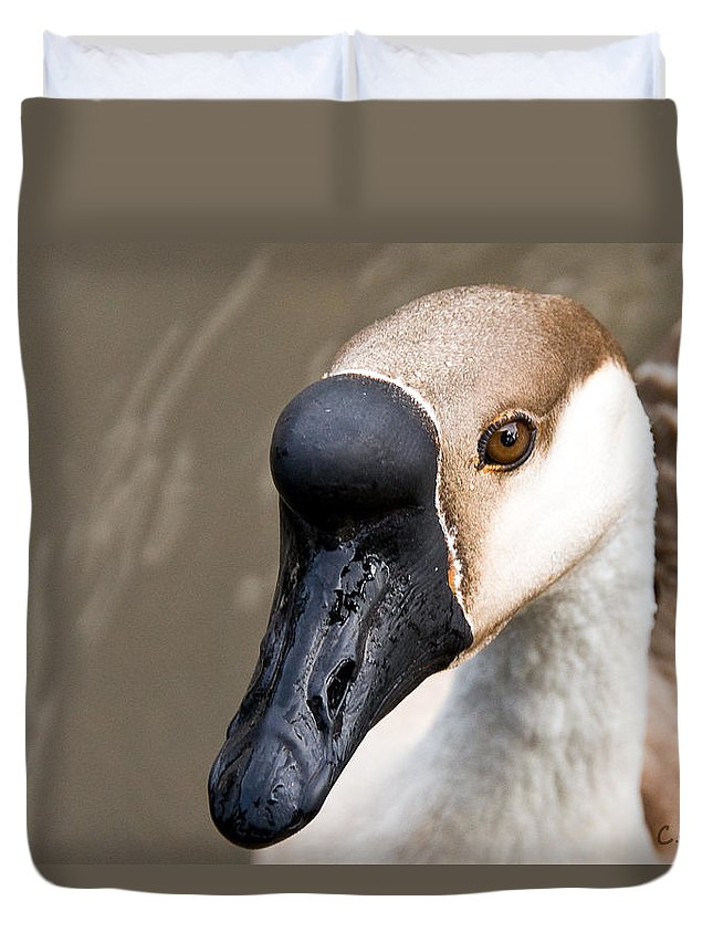 Chinese Brown Goose Duvet Cover featuring the photograph Brown Eye by Christopher Holmes