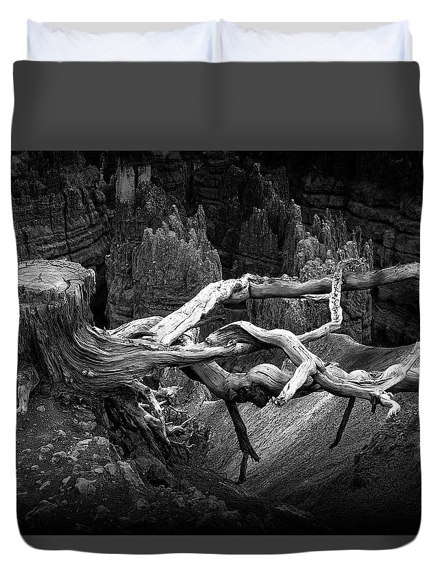 Art Duvet Cover featuring the photograph Bryce Canyon Tree Stump On A Ridge by Randall Nyhof