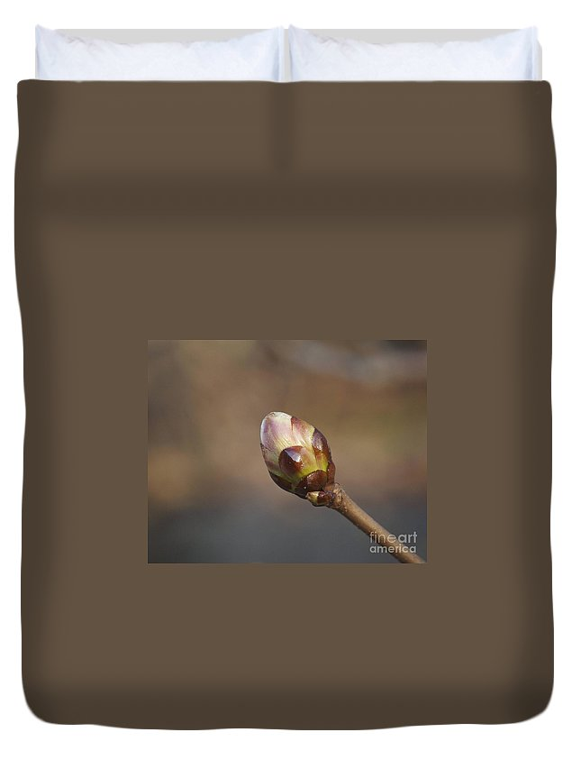 Bud Duvet Cover featuring the photograph Budding by Faith Harron Boudreau