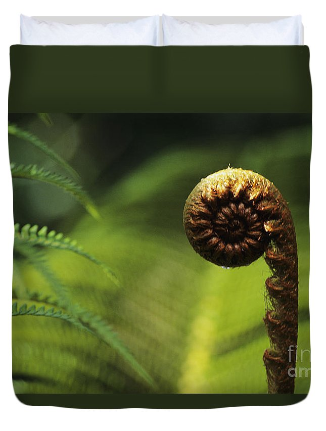 Beautiful Duvet Cover featuring the photograph Budding Fern by William Waterfall - Printscapes