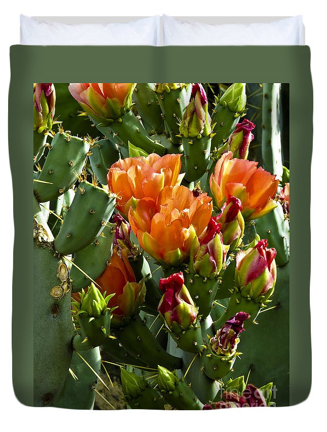 Arizona Duvet Cover featuring the photograph Buds N Blossoms by Kathy McClure
