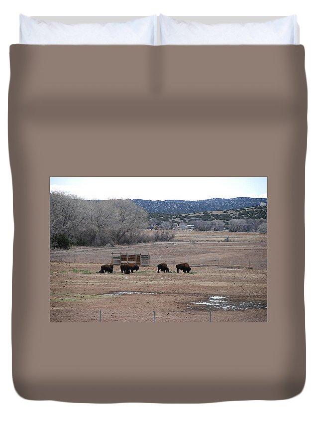 Buffalo Duvet Cover featuring the photograph Buffalo New Mexico by Rob Hans