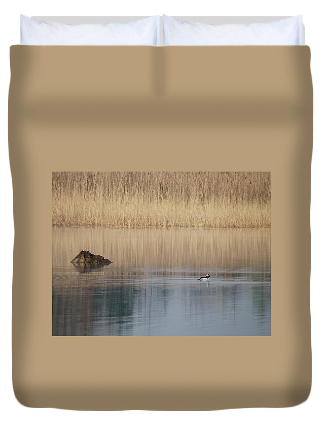 Nature Duvet Cover featuring the photograph Buffle Head Duck by Peggy King