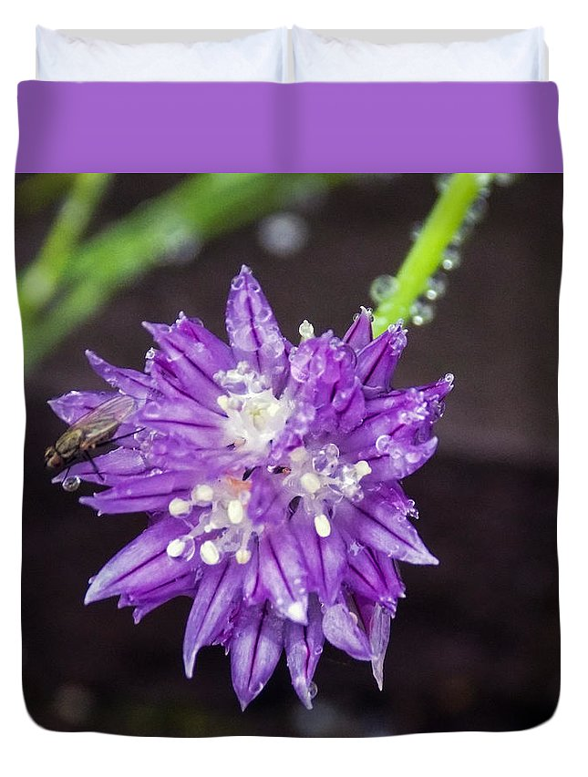 Insect Duvet Cover featuring the photograph Bug Chilling Chive by William Tasker
