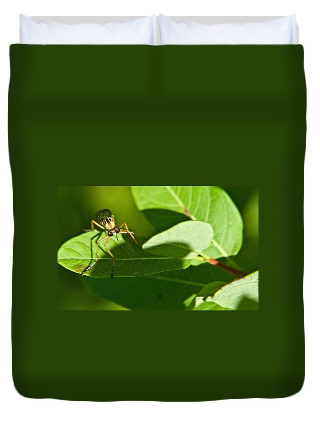 Insect Duvet Cover featuring the photograph Bug Eyes by Douglas Barnett