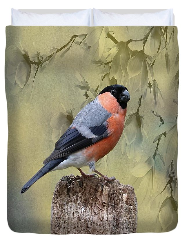 Bullfinch Duvet Cover featuring the photograph Bullfinch Bird by Movie Poster Prints