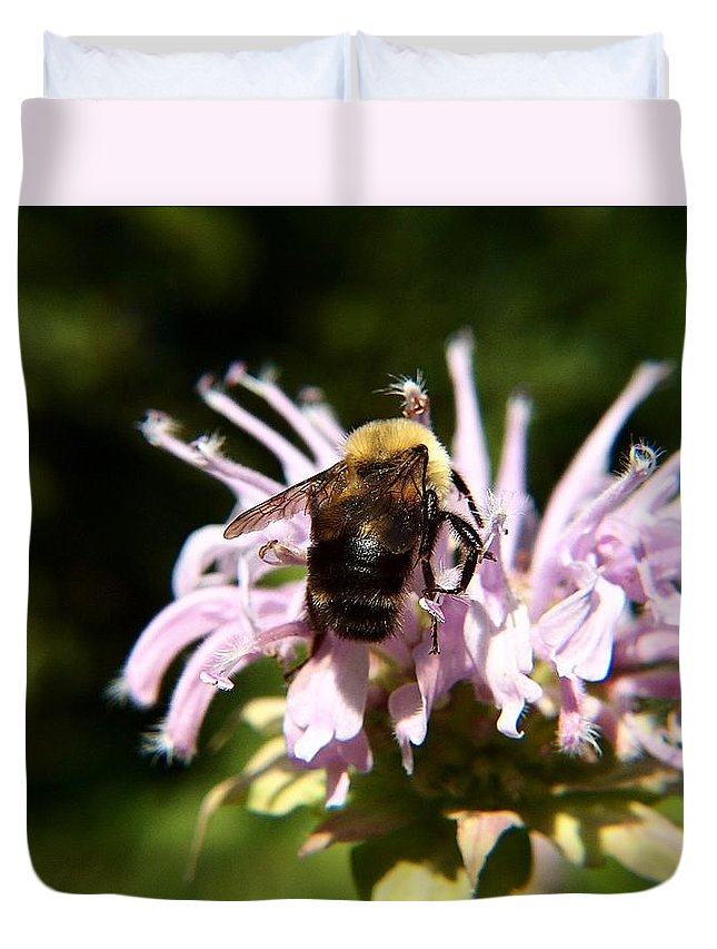 Digital Art Duvet Cover featuring the photograph Bumble Bee by Belinda Cox