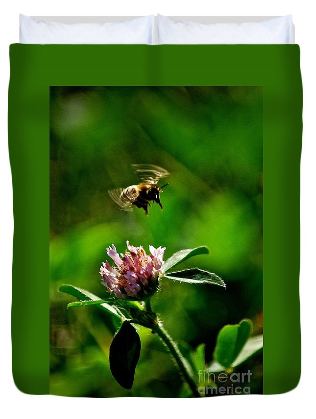 Bumble Bee And Clover - Ohio Duvet Cover featuring the photograph Bumble Bee by Christine Scott