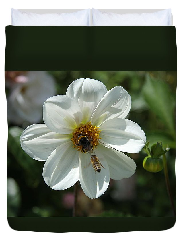 Bumblebee Duvet Cover featuring the photograph Bumblebee And Bee by Christiane Schulze Art And Photography