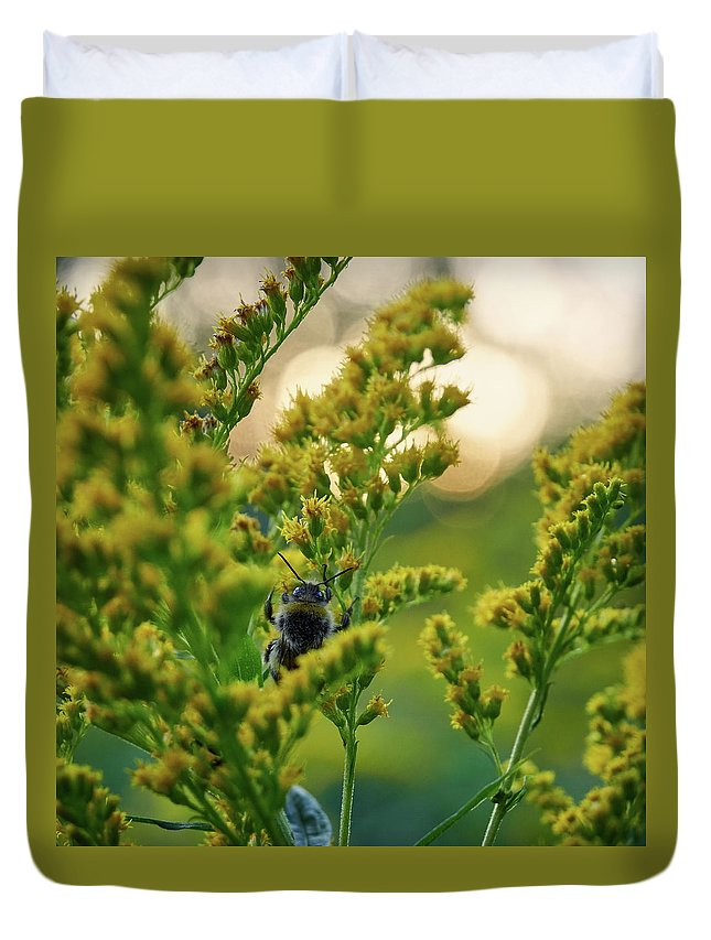 Finland Duvet Cover featuring the photograph Bumblebee And Canadian Goldenrod 15 by Jouko Lehto