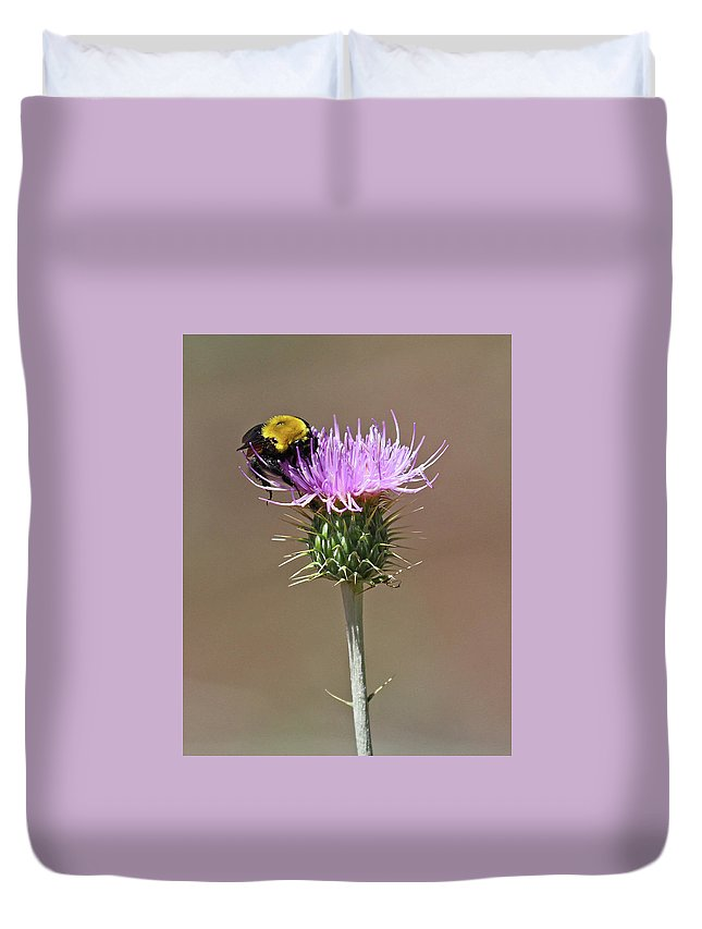 Art Duvet Cover featuring the photograph Bumblebee by Christina Boggs
