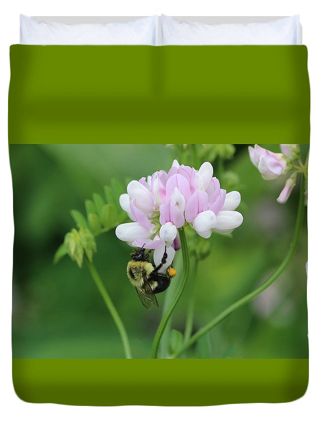 Insect Duvet Cover featuring the photograph Bumblebee On Crown Vetch by Lucinda VanVleck