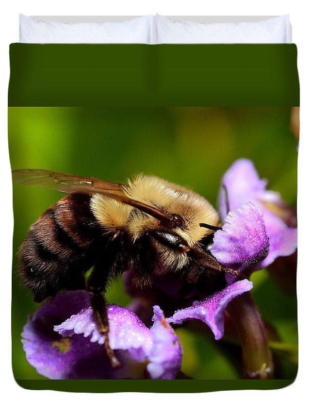 Bumblebee Duvet Cover featuring the photograph Bumblebee by Roberto Aloi