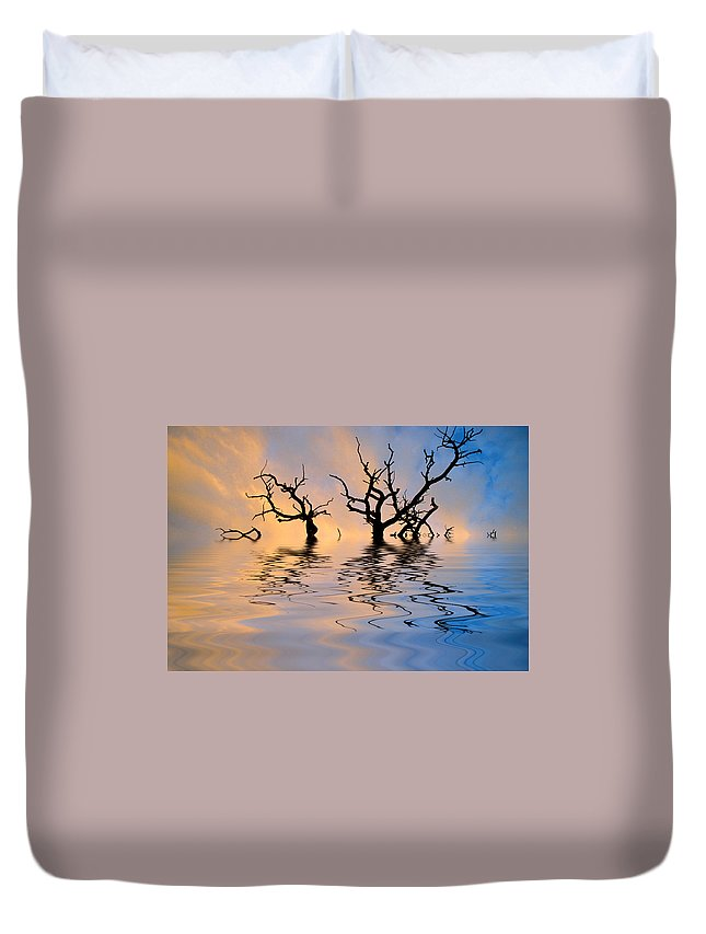 Original Art Duvet Cover featuring the photograph Slowly Sinking by Jerry McElroy