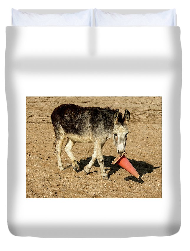 Burro Duvet Cover featuring the photograph Burro Playing With Safety Cone by Elizabeth Hershkowitz