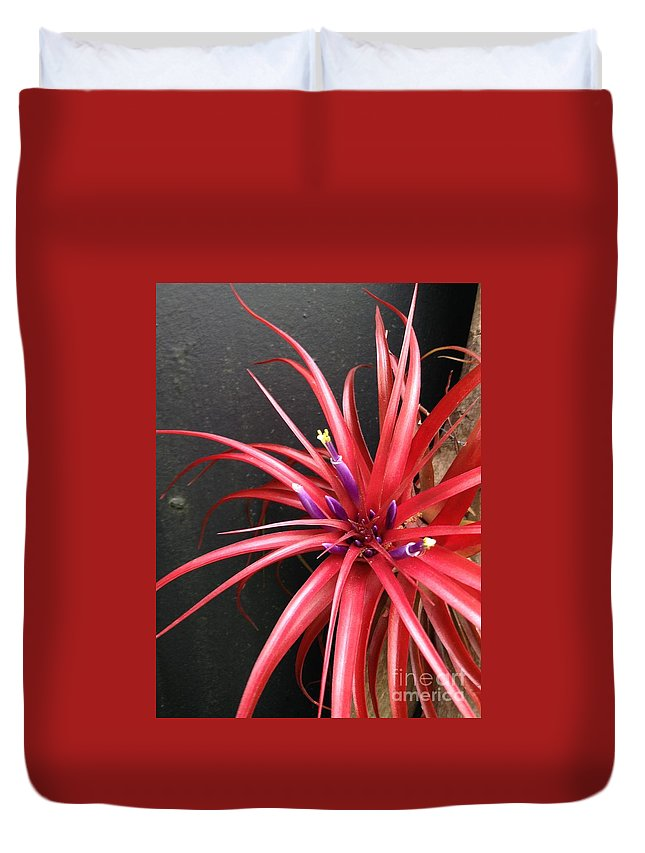 Botanical Duvet Cover featuring the photograph Burst by Dennis Knasel
