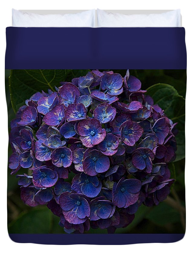 Hydrangea Duvet Cover featuring the photograph Bursting Blues by MCM Photography