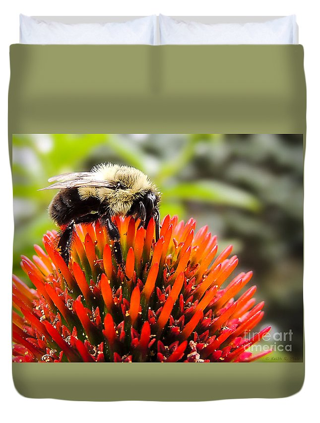 Bee Duvet Cover featuring the photograph Busy As A Bee by Keith Ptak