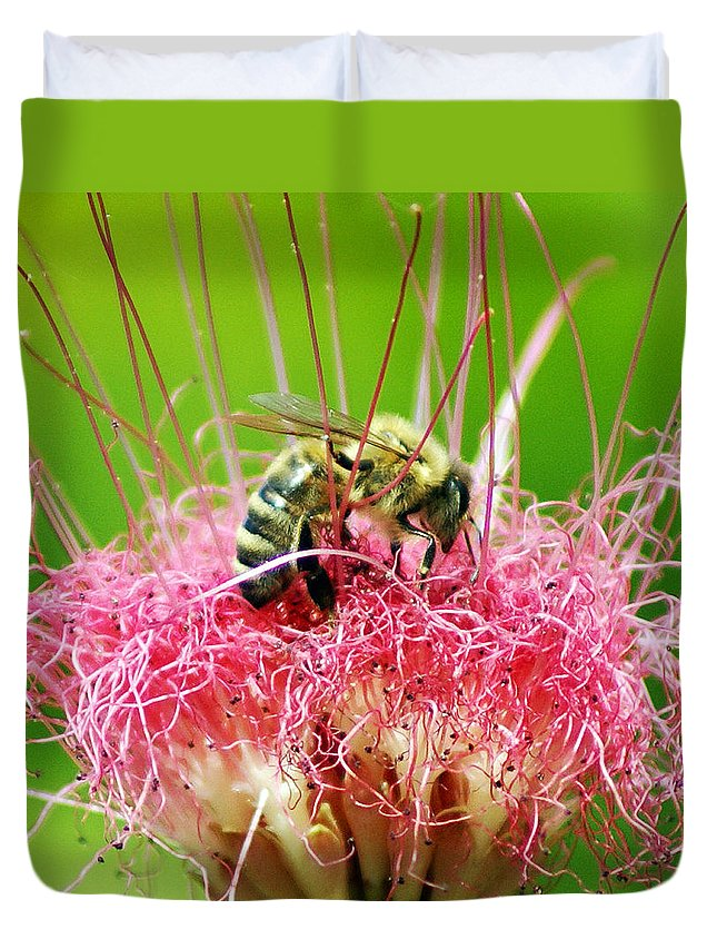 Nature Duvet Cover featuring the photograph Busy Bee by Holly Kempe